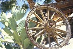 老马车车轮和仙人掌, Anza-Borrego沙漠国家公园,加利福尼亚 免版税图库摄影