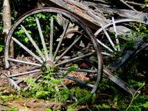 老马车车轮被放弃的谷仓 免版税图库摄影