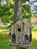 老鸟议院在公墓2 免版税库存照片