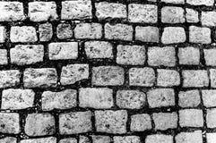 老鹅卵石路面抽象B&W背景  免版税库存图片