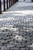 老鹅卵石边路在费城 图库摄影