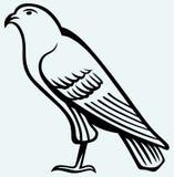 老鹰剪影 免版税图库摄影