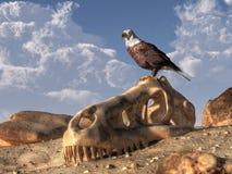 老鹰和恐龙头骨 向量例证