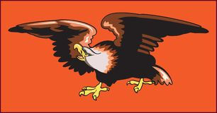 老鹰掠食性鸟 库存照片
