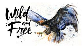 老鹰狂放和自由水彩五颜六色的绘画,大鸟掠食性动物, T恤杉,山的国王设计,释放飞行 免版税图库摄影