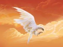 老鹰白色 皇族释放例证
