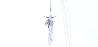 老鹰的飞行,威尼斯 免版税库存照片