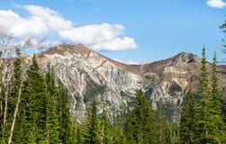 老鹰盖帽原野,俄勒冈,美国的花岗岩峰顶 库存照片