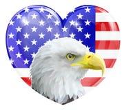 老鹰美国爱心脏 免版税库存照片