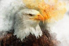 老鹰美国鸟水彩绘画标志掠食性动物 向量例证