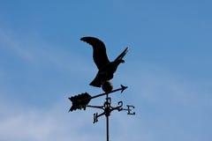 老鹰翻板天气 库存图片