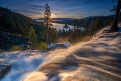 老鹰落清早 加利福尼亚Tahoe湖 库存照片