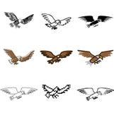 老鹰被设置的飞行图标 免版税库存图片