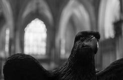 老鹰讲演台在维尔斯大教堂BW 库存图片