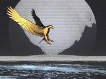 老鹰金黄月亮 图库摄影