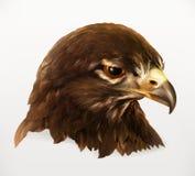 老鹰顶头例证 免版税库存图片