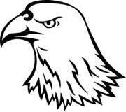 老鹰顶头纹身花刺 库存图片