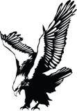 老鹰飞行向量 免版税库存图片