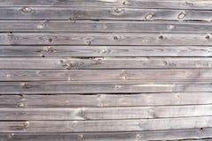 老黑暗和损坏与黑planked墙壁特写镜头视图真菌木纹理  免版税库存照片