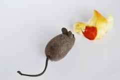老鼠玩具和香肠面包在白色背景 免版税图库摄影