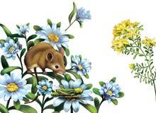 老鼠, grasshoper蓝色草甸花 库存照片