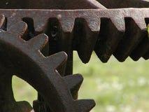 老齿轮 免版税图库摄影