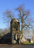 老,传统谷粮仓和树 库存照片