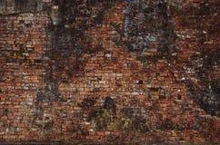 老,年迈的,生锈,被抓的,五颜六色的砖墙纹理/背景 免版税库存图片