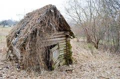 老,毁坏森林、日志和棍子一点木被放弃的被破坏的沙沙响的打破的房子长满与青苔和植物 库存图片