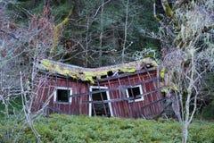 老,被放弃的房子在森林里 库存照片