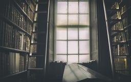 老经典图书馆细节  免版税库存图片