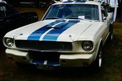老经典白色和蓝色汽车入口细节 免版税库存照片