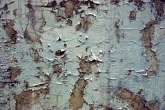 老破旧的墙壁的纹理 库存照片