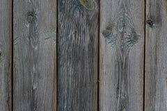 老黑暗的木篱芭 免版税库存照片