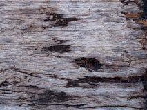 老黑木纹理背景 免版税库存图片