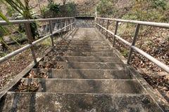 老水泥台阶。 库存图片