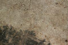 老水泥地板纹理地板背景 免版税库存图片