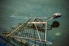 老购物车在河 免版税库存照片