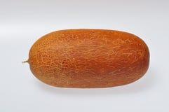 老黄瓜 免版税库存图片