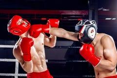老练的两位拳击手互相战斗 免版税库存照片
