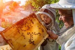 老练的蜂农祖父教他的关心对蜂的孙子 养蜂 调动的概念  免版税库存图片