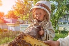 老练的蜂农祖父教他的关心对蜂的孙子 养蜂 调动的概念  免版税库存照片