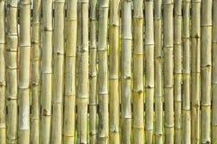 老黄色竹墙壁纹理背景 免版税库存图片