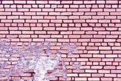 老紫色被定调子的被风化的砖墙纹理 库存照片