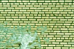 老绿色被定调子的被风化的砖墙纹理 库存照片