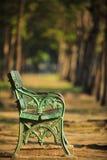 老绿色长凳在有模糊的背景用途的公园当拷贝空间 免版税图库摄影