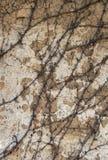 老破裂的多孔黏土墙壁 免版税库存照片
