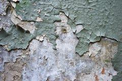 老破裂的绿色膏药片断在被漂白的退色的石膏墙壁上的,在文本的一点空虚中间,原物 库存照片
