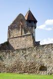 老Cistercian本尼迪克特教团修道院的废墟在Carta,罗马尼亚 免版税库存照片