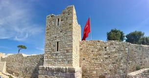 老Foca Foca城堡,伊兹密尔 由于漂浮在镇的海的封印,解决是n 免版税库存照片